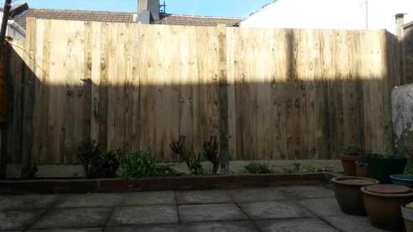 Ivy removed and new fence for privacy